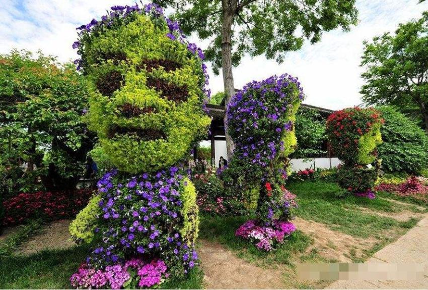 西溪植物园精品花卉园